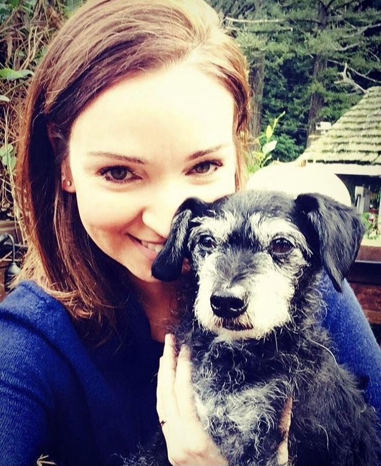 Dr. Katie Lawlor holding her dog Bear - I Love Veterinary