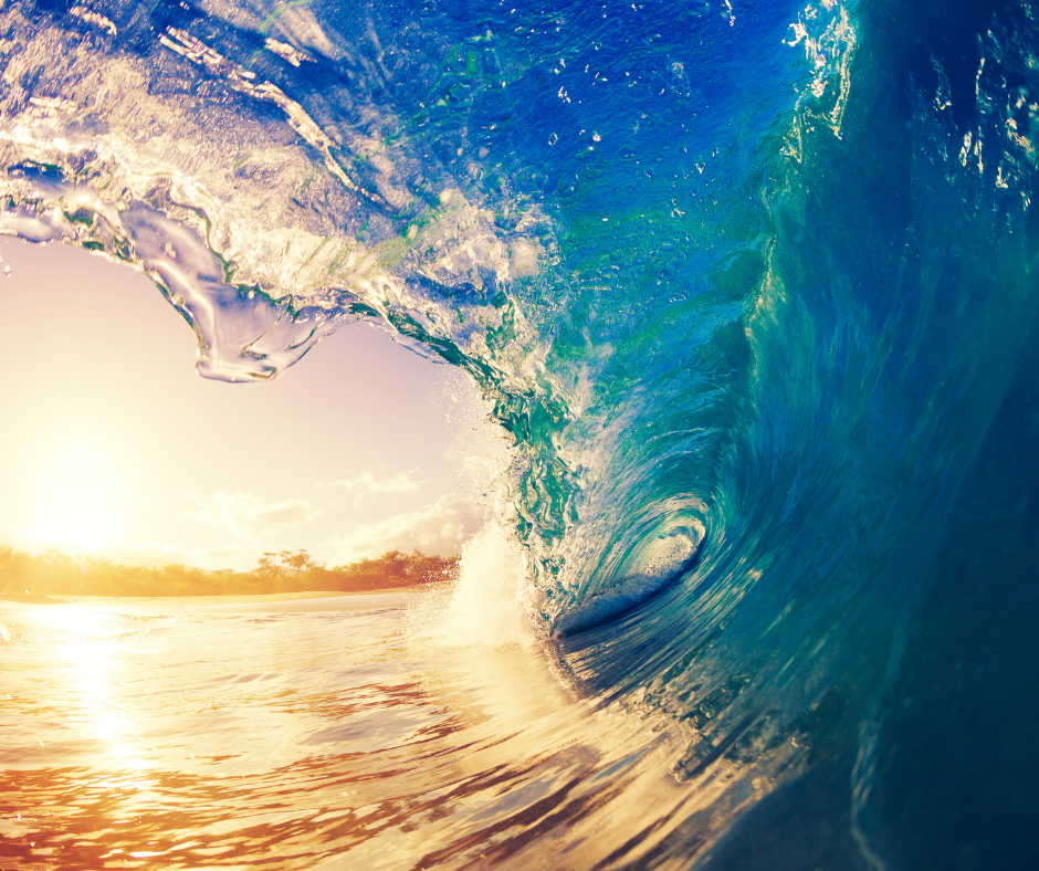 a wave breaking in the sunshine I Love Veterinary - Blog for Veterinarians, Vet Techs, Students
