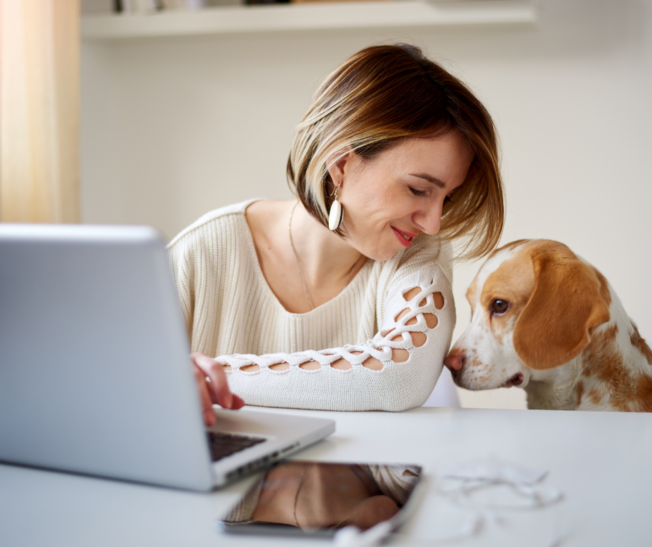 dog at work with owner
