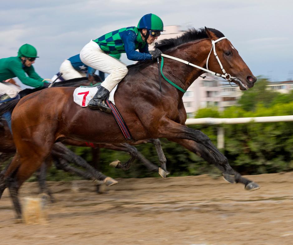 jockeys racing horses