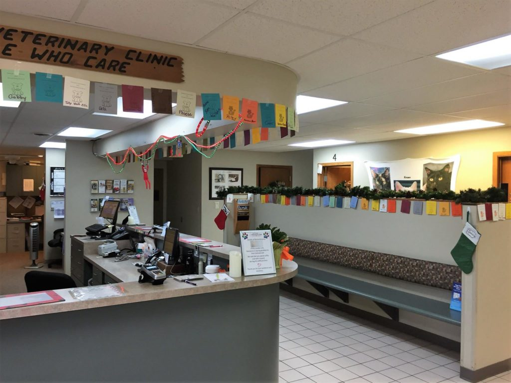 Vet Clinic of the Week La Crosse Veterinary Clinic - I Love Veterinary