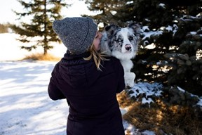 Picture1 I Love Veterinary - Blog for Veterinarians, Vet Techs, Students