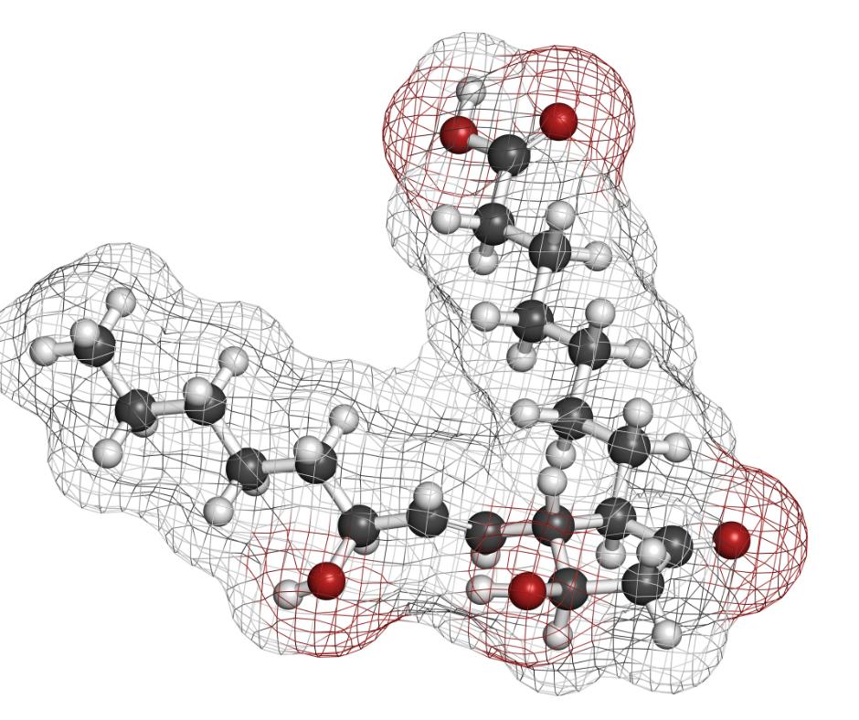 image of prostaglandin