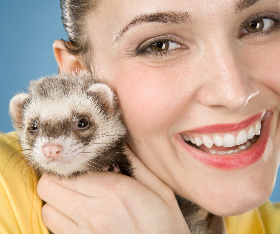 smiling woman and baby black footed ferret 1 I Love Veterinary - Blog for Veterinarians, Vet Techs, Students